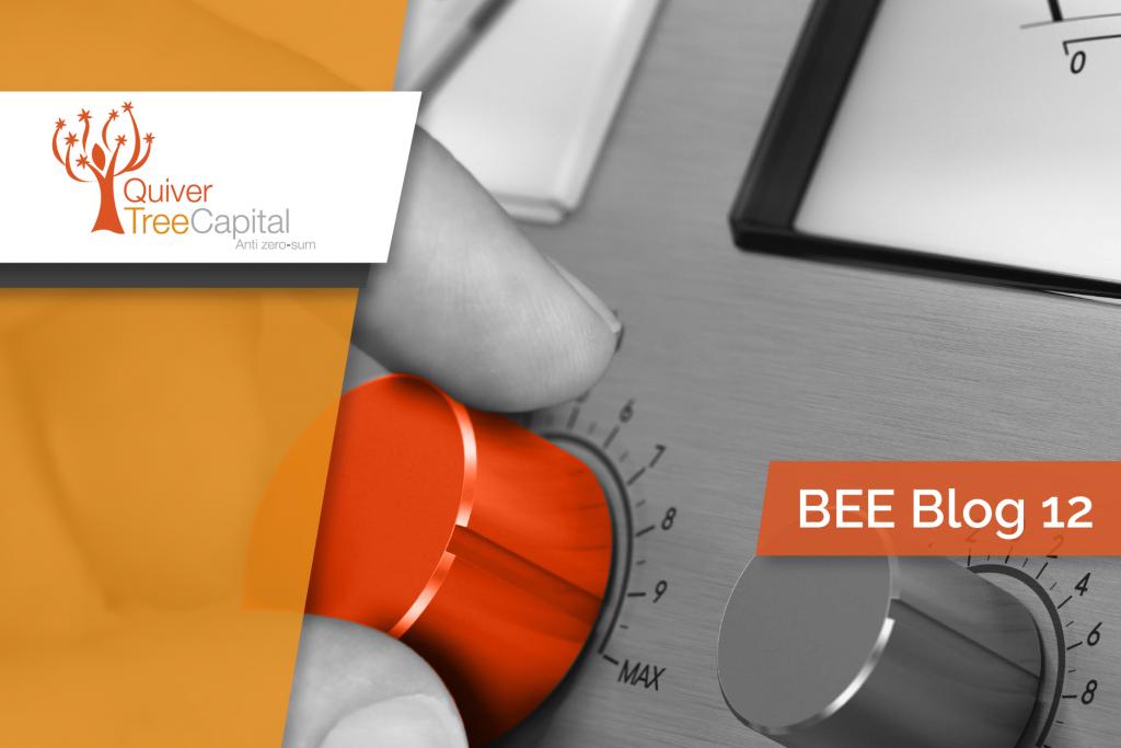 BEE Blog 12